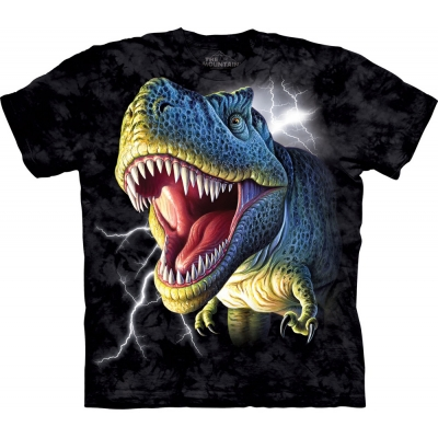 Lightning Rex Kindershirt