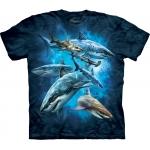 Shark Collage Dieren Kindershirt