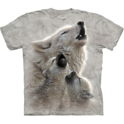 Singing Lessons Wolf Kindershirt