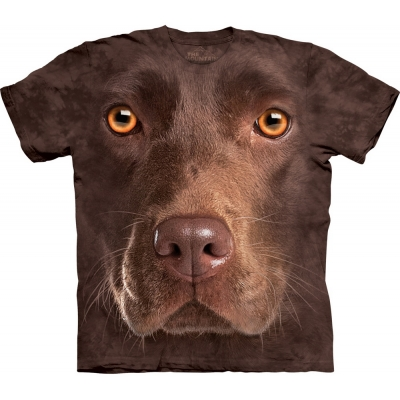 Chocolate Lab Face Kindershirt