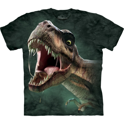 T-Rex Roar Kindershirt