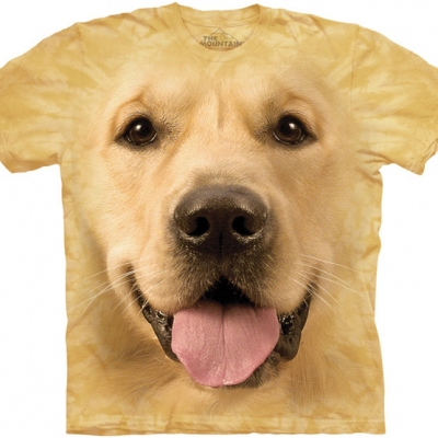 Big Face Golden Kindershirt