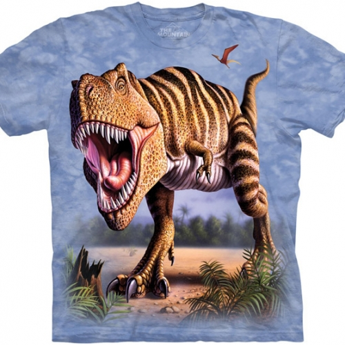 Striped Rex Kindershirt
