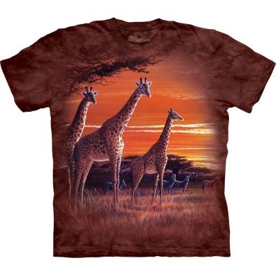 Sundown Giraffeshirt Kind