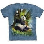 Pan Da Bear Pandashirt Kind
