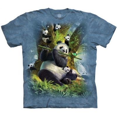 Pan Da Bear Pandashirt Kind
