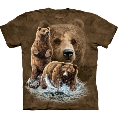 Find 10 Brown Bears Berenshirt