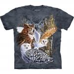 Find 11 Owls Shirt