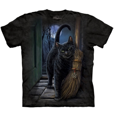 A Brush with Magic Fantasy Shirt